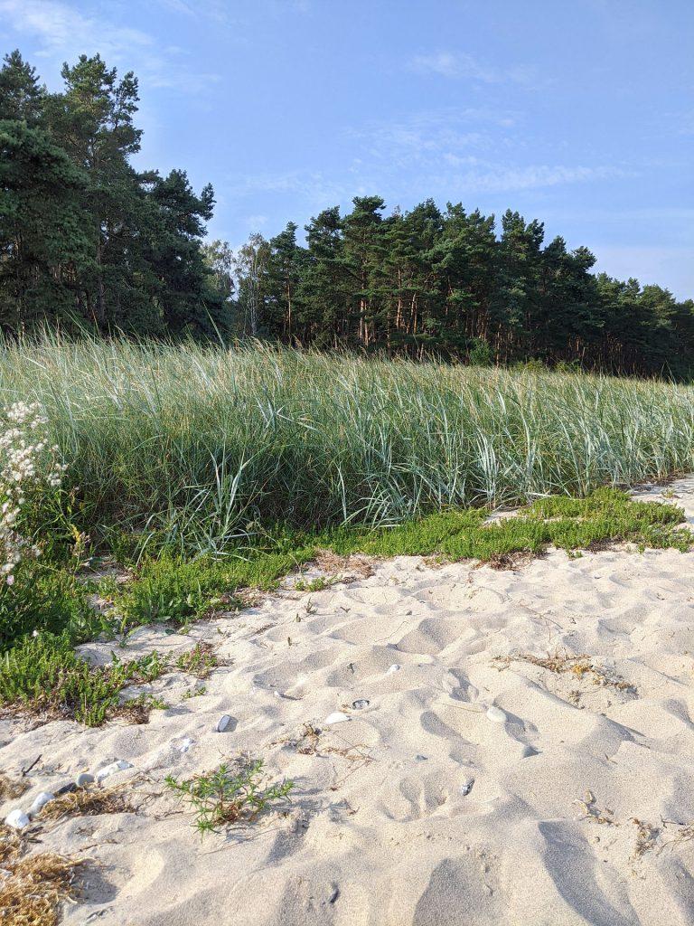 Rügen Strand Tipps