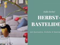 DIY: Herbst-Bastelideen mit Kastanien & Eicheln