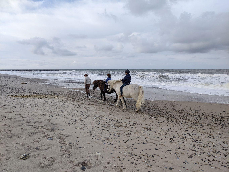 Reiten am Strand Dänemark