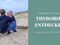 Dänemark-Urlaub an der Nordwestküste: Tyborøn und Umgebung entdecken