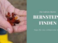 Bernstein finden: Tipps für eine erfolgreiche Bernsteinsuche