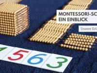5 Gründe für die Montessori-Schule