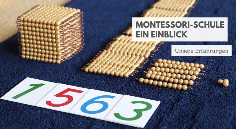 Montessori-Schule Erfahrungen