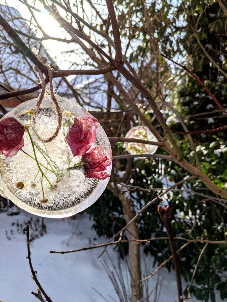 Eisscheiben Winter DIY