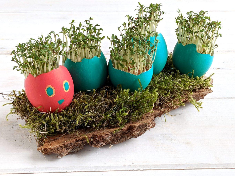 Raupe Nimmersatt Eier basteln