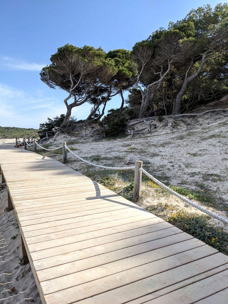 Cala Agulla Mallorca