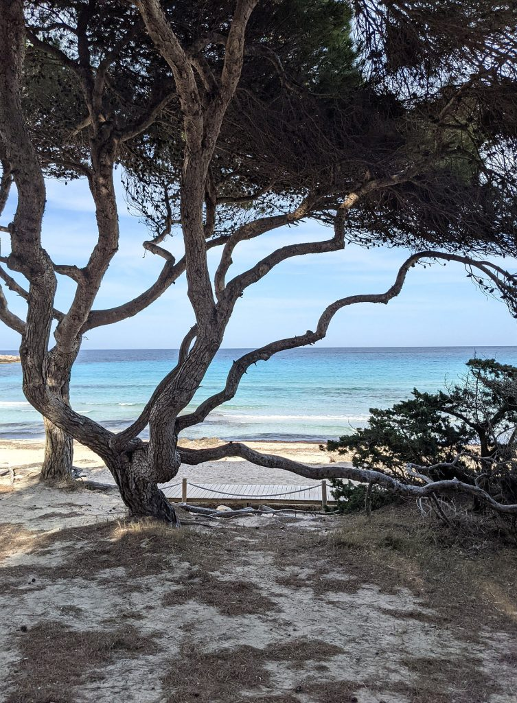 Strände Mallorca Ostküste Tipps