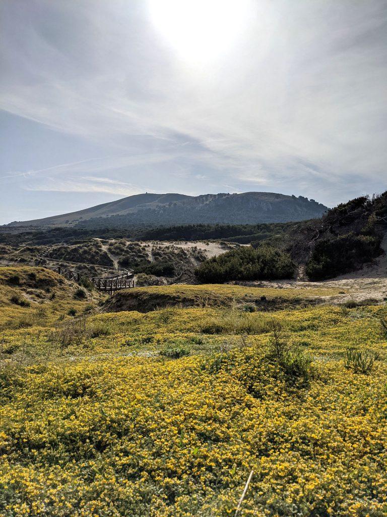 Top Strände Ostküste Mallorca