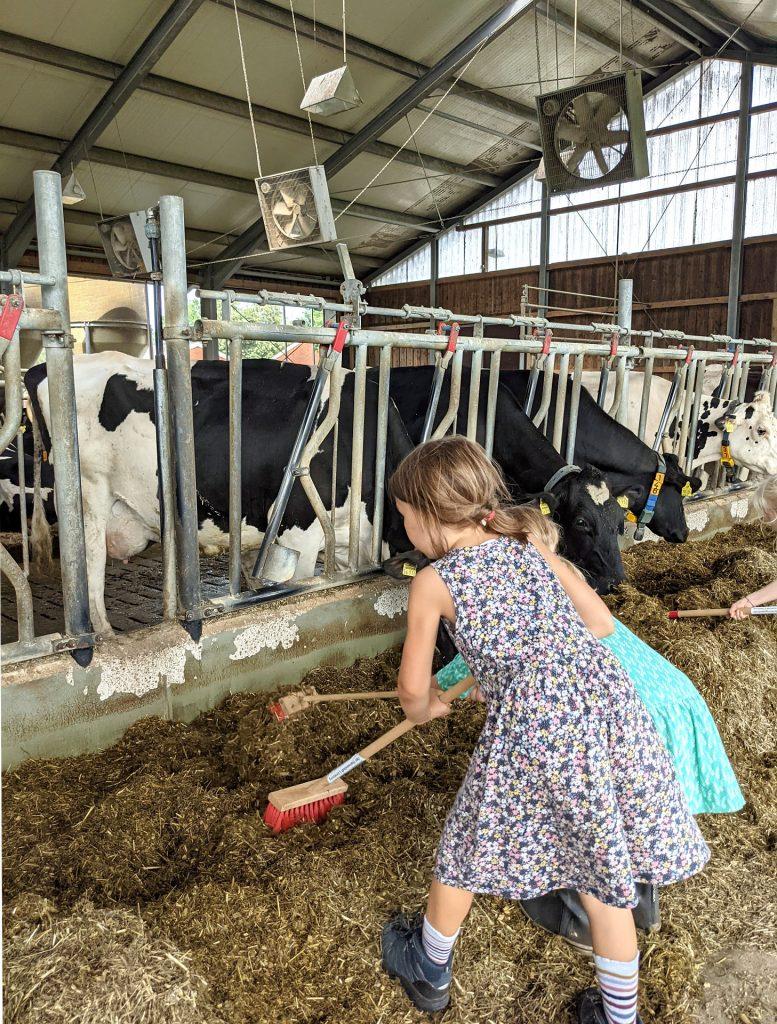 Bauernhof Kindergeburtstag
