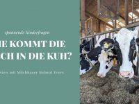 Wie kommt die Milch in die Kuh? Interview mit Milchbauer Helmut Evers