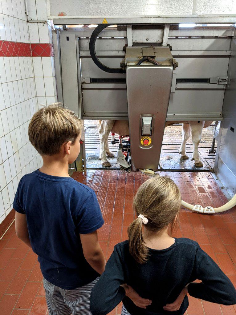 Melkroboter Milchhof Lüschen-Strudthoff
