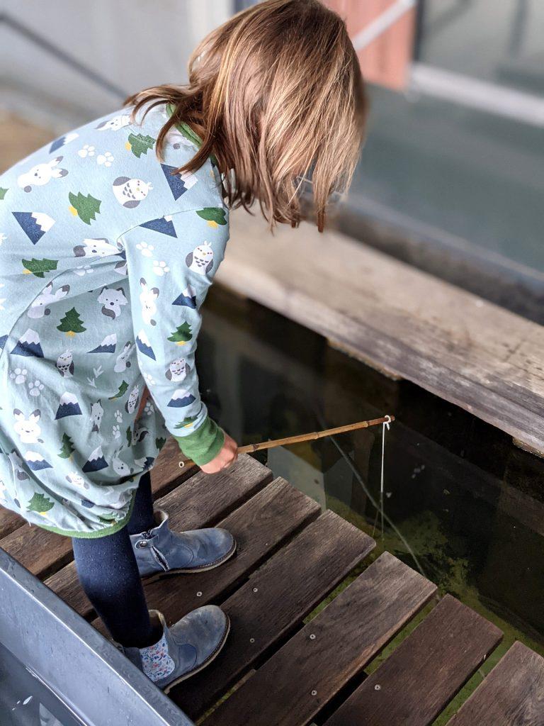 Lohnt sich das Aquarium Hirtshals