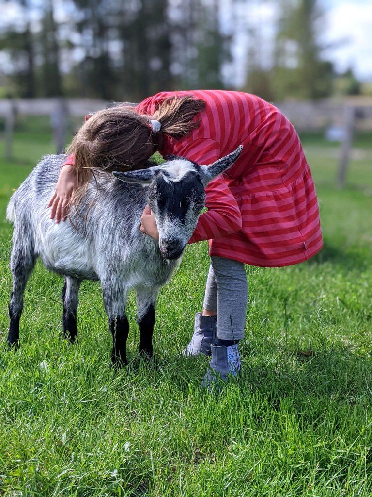 Nordjütland mit Kindern